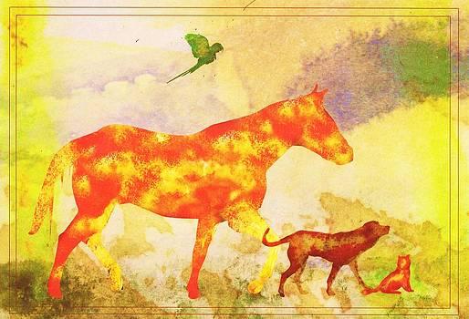 Anne-Elizabeth Whiteway - Animal Remembrance