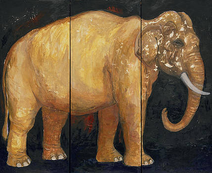 Animal Rites by Dorothy Braudy