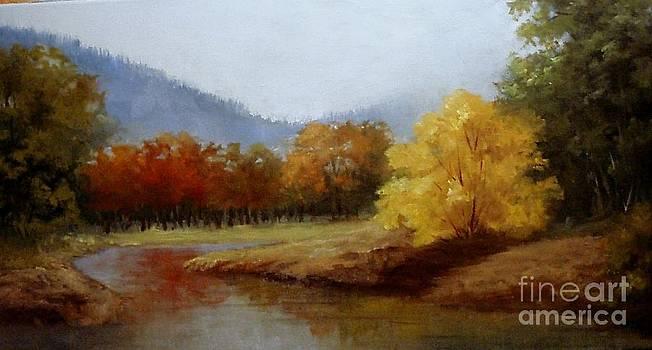 Anns Creek Bed by Barbara Haviland