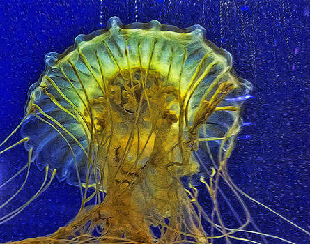 Another Abstract Jellyfish by Janet Maloy