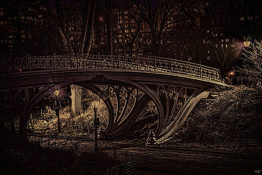 Another Bridge to Cross by Chris Lord
