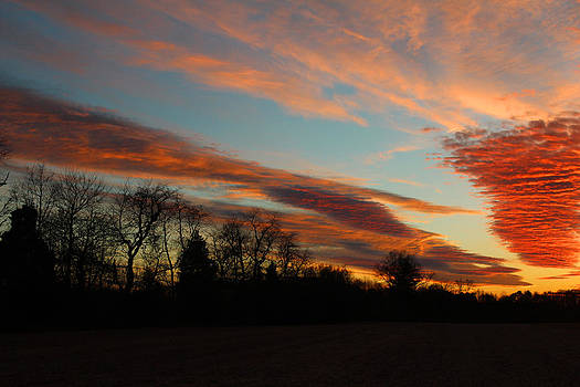Another Sunset at Mt Airy by Renee Braun
