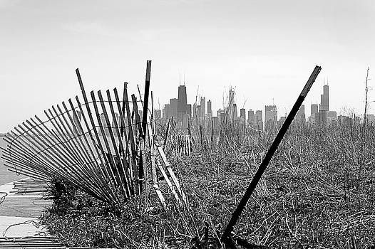 Milena Ilieva - Another view of Chicago