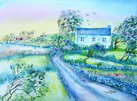 Trudi Doyle - Another Windy day on Cleare Island Ireland