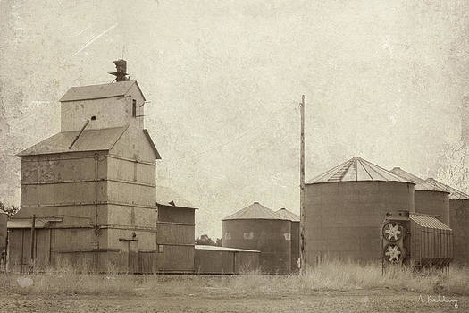 Ansley - Nebraska by Andrea Kelley