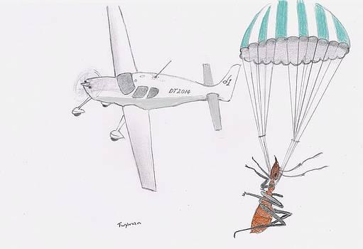Ant Rescue by Dan Twyman