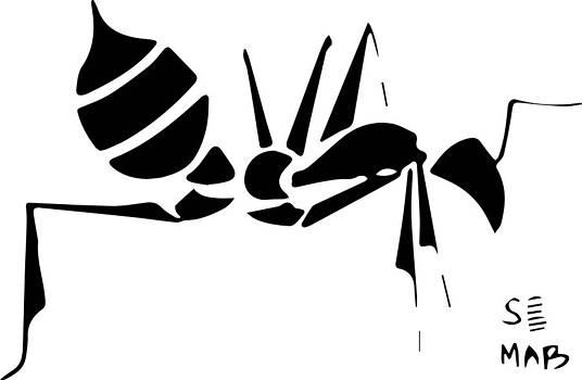 Seemab Zaheera - Ant1