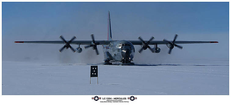 Antarctic Hercules by David Barringhaus
