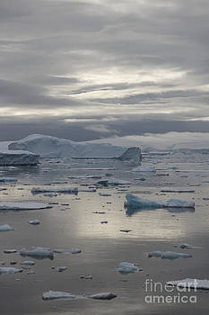 Antarctica Reflections All Profit go to Hospice of the Calumet Area by Joanne Markiewicz