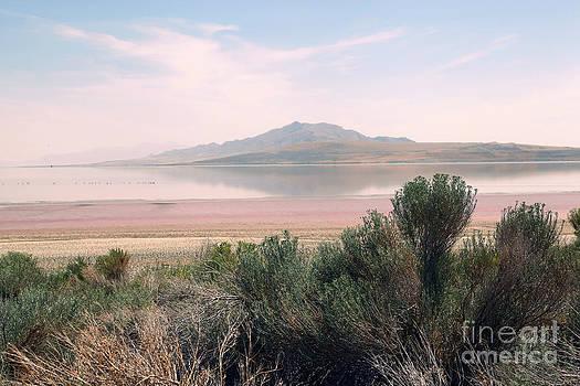 Sophie Vigneault - Antelope Island
