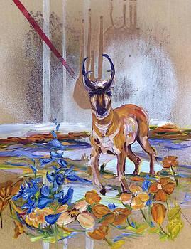 Antelope Play by Andrea LaHue aka Andrea LaHue