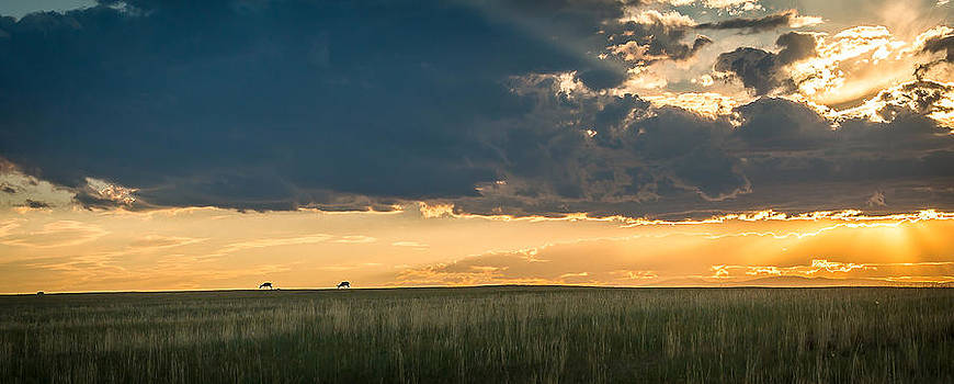 Antelope Sunset by Eric Thomson