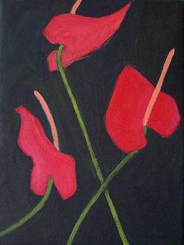 Anthuriums by Mary Adam