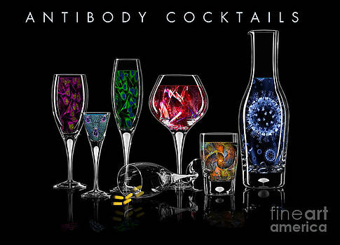 Antibody Cocktails by Megan Dirsa-DuBois