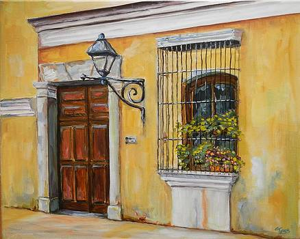 Antigua Window and Door by Tess Lehman