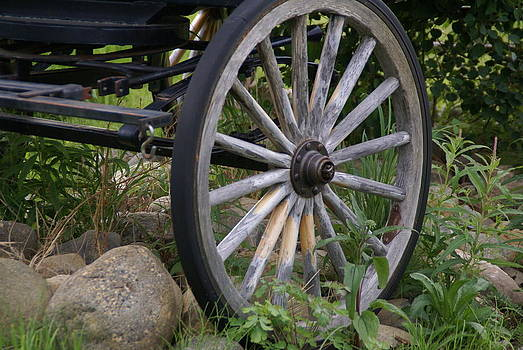 Patricia Twardzik - Antique Wagon Wheel