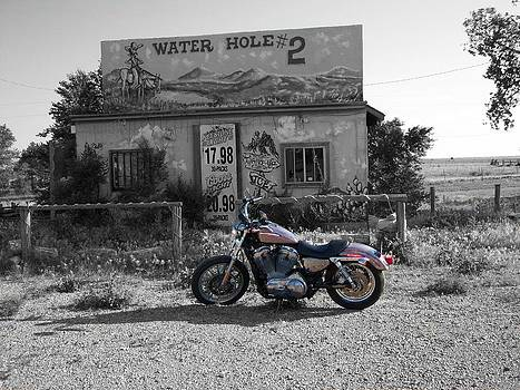 Antique Water Hole  Number2 by Trevor Hilton