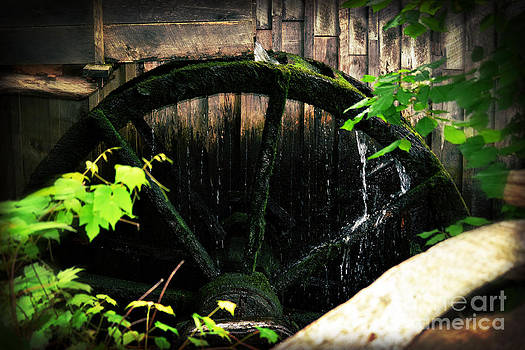 Antique Water Wheel on Homestead by Eva Thomas