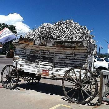 Antler Wagon by Dan Mason