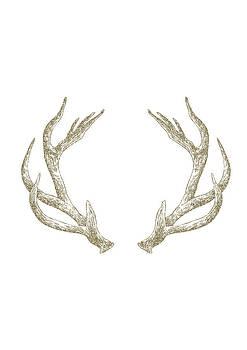 Antlers by Randoms Print