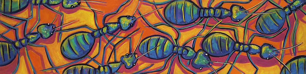 Ants by Ilene Richard