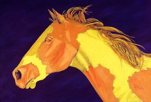 Apache Gold by Cynthia Sampson
