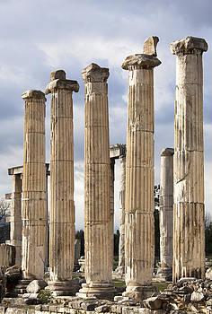 Ramunas Bruzas - Aphrodisias Columns
