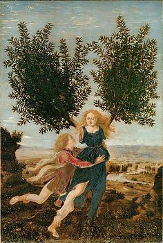 Antonio Del Pollaiuolo - Apollo and Daphne