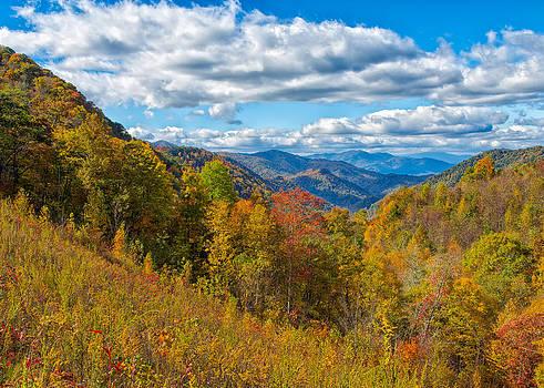 Appalachian Beauty by John M Bailey