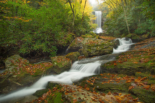 Appalachian Stream by Doug McPherson