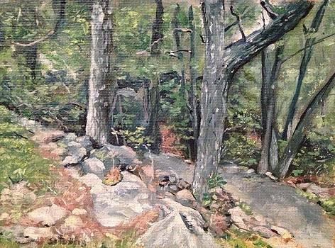 Appalachian Trail 2 by Victor SOTO
