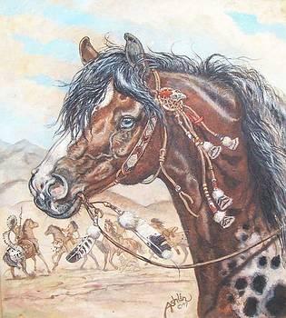 Appaloosa Warhorse by Sheila Tibbs