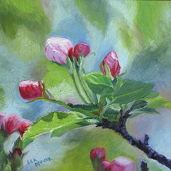 Lea Novak - Apple Blossom Buds