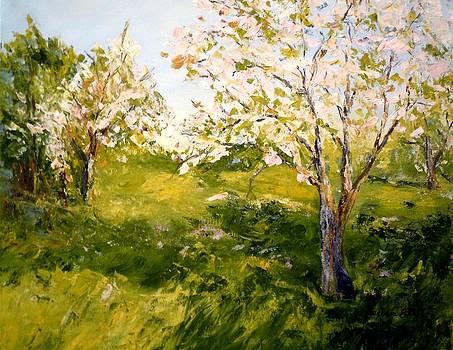 Apple Blossom Time by Barbara Pirkle
