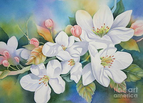Apple Blossom Time by Deborah Ronglien