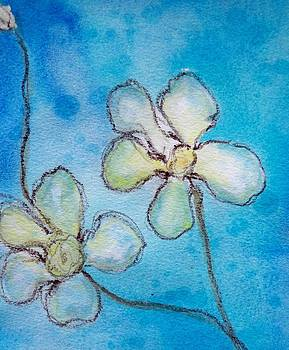 Apple Blossoms  by Sheba Goldstein