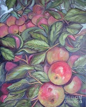 Apple Harvest by Vivian Haberfeld