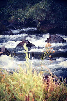 Applegate River by Melanie Lankford Photography
