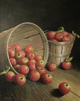 Apples In Baskets by Gary Gandy