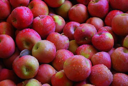 Apples by Mamie Gunning