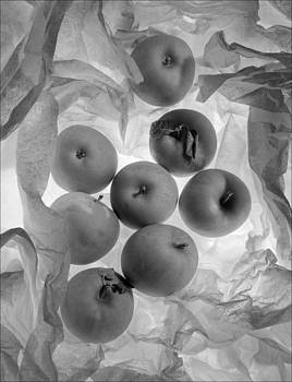 Apples by Morocco Flowers Images