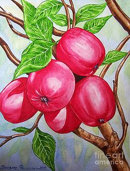 Apples on a tree by Barbara Pelizzoli