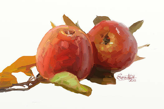 Apples by Qaiser Khalil