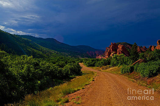 Approaching by Barbara Schultheis