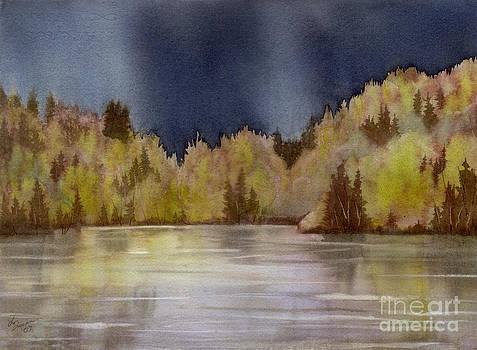 Approaching Rain by Lynn Quinn