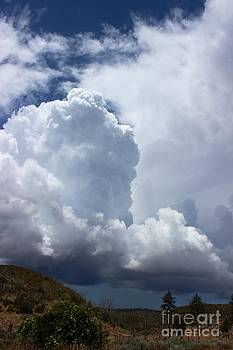 Approaching Storm by Laura Paine