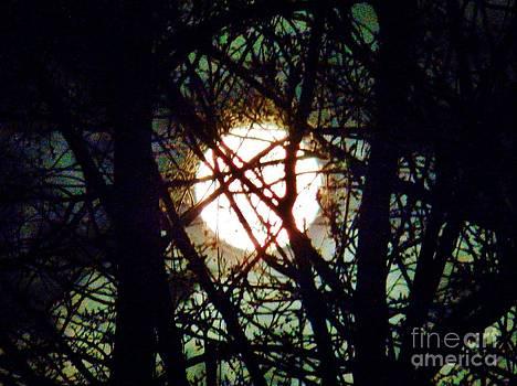 Judy Via-Wolff - April 3 AM Moon
