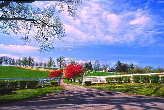 Randall Branham - April Entry Kentucky Hosre Farm