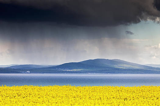 April by Evgeni Dinev