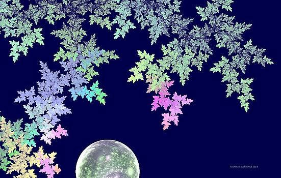 April Moon by Naomi Richmond